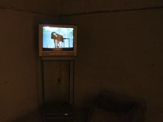 Karl Karner / Linda Samaraweerova, 'Greenwax On', video, 2013.